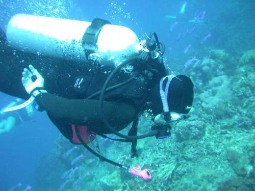 Jeri_diving