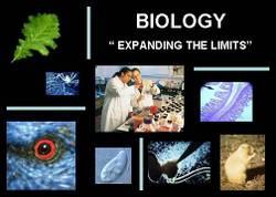 Imagebiology_2